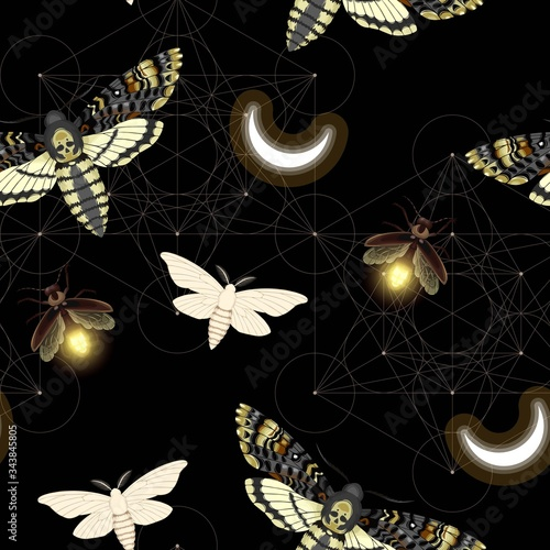 Photo Vector pattern with death head hawk moth