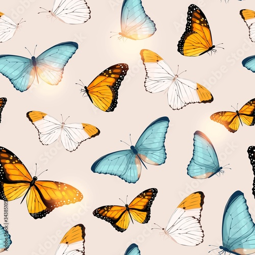 Fotografie, Obraz Vector pattern with high detailed tropic butterfly