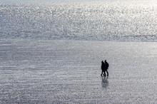 Im Wattenmeer Einsam