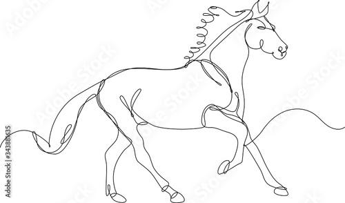 Fotografering cavallo disegnato a singola linea continua