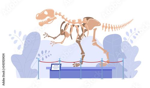 Fotografie, Tablou Dinosaur skeleton in natural history museum, paleontology exhibition, vector illustration