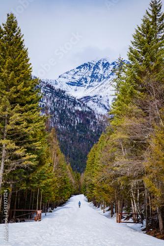 Fényképezés Person skiing in Glacier National Park, Montana