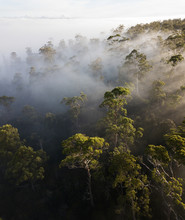 Aerial View Of Sunrise Rays Th...