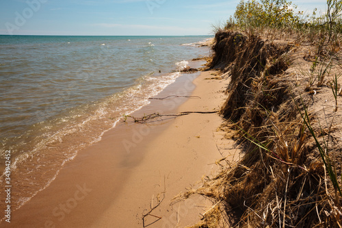 The wave action from Lake Michigan has had an effect on the stabilized beach of Canvas Print