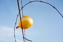 Deflating Golden Balloon Caugh...
