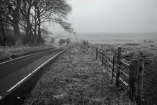Black And White Photo Of Foggy Winding Road In The Countryside Stretching Into The Distance And A Large Tree Above The Road