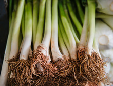 Fresh Green Onions For Sale At Central Market, Phnom Penh, Cambodia, Southeast Asia
