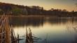 Flussspiegel