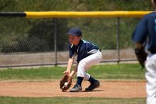 Little League Baseball Infielder Fielding A Ground Ball
