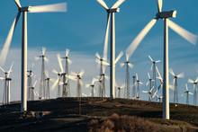 Windmills Dot The California M...