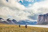 Rear view of men hiking on Baffin Island