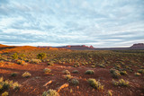 early sun light over the scrublands of the utah desert in canyonlands