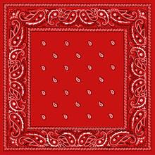 Red Bandana Square Print