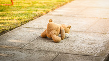 Lost Toy Bear Lying On The Alley