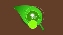Linear Bounce And Spin Animation Of Design Of A Circle With Zig Zigzag Over A Green Sparkling Sprout Decorated With Sun Approaching Out Of Mountains With Crops For Natural Nourishment Products