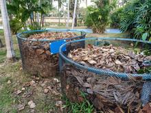 Dry Leaf Compost