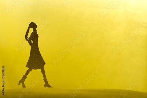 散歩する女性、夜明け、あるいは夕暮れ。 Canvas Print
