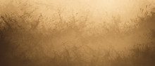Abstract Brown Rough Texture D...