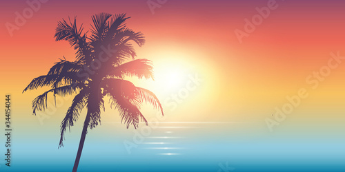 Photo palm trees silhouette on a sunny day summer holiday design vector illustration E