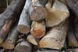 drewna, drewno na opał, dzienniki, dzienniki, drewno, drzew, pryzma, stos, bory, ciąć, charakter, ogień, graty, drewniane, kora, braun, bagażnik, koks, drzew, ciepło, woodpile, tekstura, sosna, energe