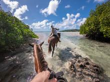 Horse Riding In Blue Lagoon Sunny Day Turquoise Water Esparto Santo Island Vanuatu
