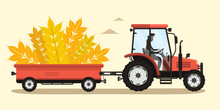 Harvesting Crops Vector Illust...
