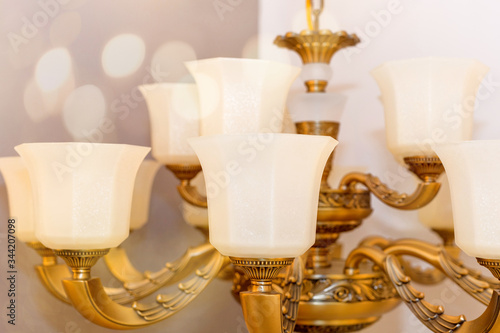 Image of a ceiling chandelier with white frosted plafonds mounted on a gold-colored armature in the room Canvas Print