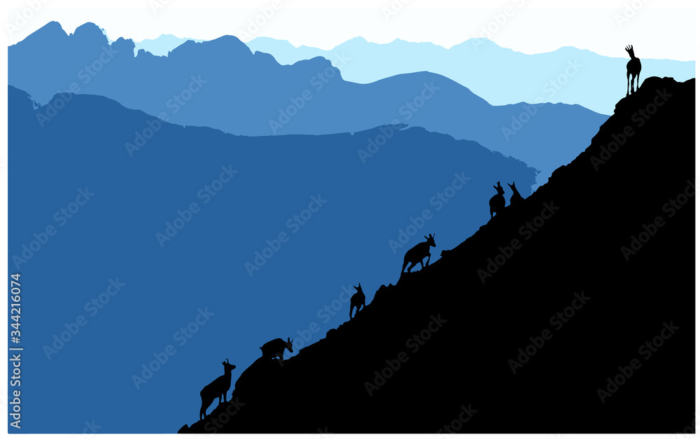 Fototapeta Black silhouettes of chamois climbing uphill, mountains in the background. Vector illustration.