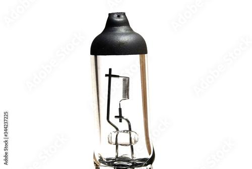 Obraz Filament of a halogen h7 lamp - fototapety do salonu