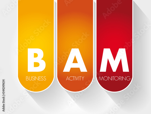 BAM - Business Activity Monitoring acronym, concept background Canvas Print