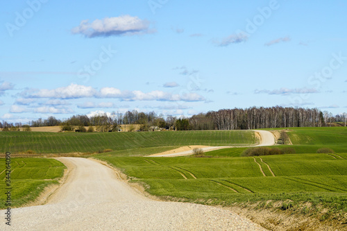 view of a winding scenic gravel road between the fields Canvas Print