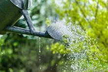 Spring Summer Garden Watering. Water Saving Ecology Gardening Background