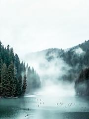 Panel Szklany Podświetlane Rzeka i Jezioro Fog