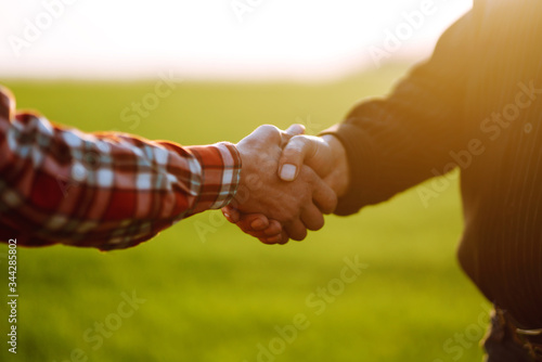 Fototapeta Handshake two farmer on the background of a wheat field at sunset. The concept of the agricultural business. obraz