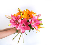 Woman Man Child Hands Holding Give A Bouquet Of Pink And Orange Lilies On A White Background. Place For Text.