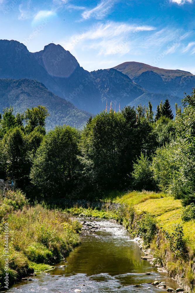 Fototapeta góry las krajobraz w słońcu