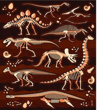 Dinosaur Fossils, Eggs, Bones ...
