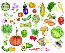 Collection Of Colorful Vegetab...