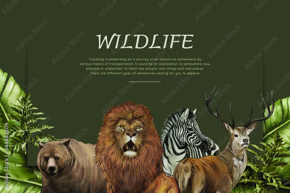 Fototapeta Wildlife poster with various animals vector