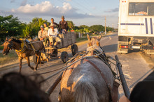 Five Men Riding A Horse Drawn-Carriage On A Rural Road At Sunset.