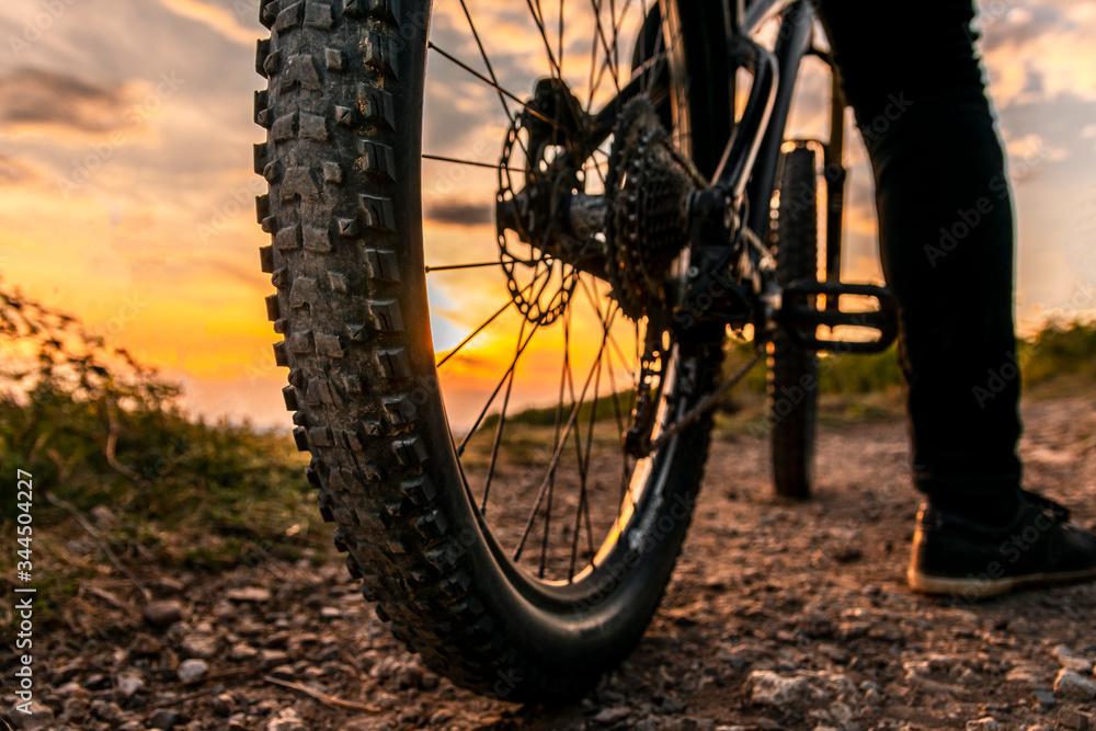 Fototapeta Mountain bike rear wheel detail. Back shot of mountain bike on sunset. Mountain bike tire.