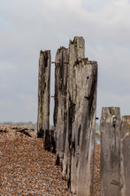 Old Rotting Wooden Groynes On ...