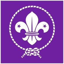 Scout Flag/ Logo Vector Illustration