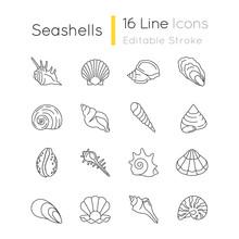 Seashells Pixel Perfect Linear...