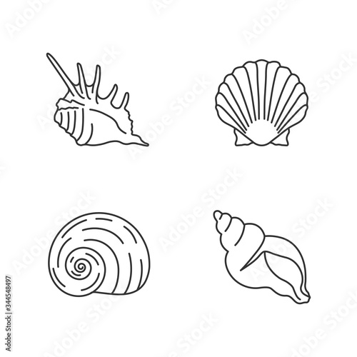 Exotic sea shells pixel perfect linear icons set Tableau sur Toile