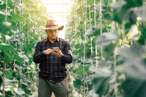 Photo The agronomist uses the internet connection tab