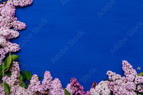 Fototapety, obrazy: blooming lilac flowers in spring on a blue background