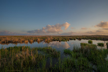 Sunset Over The Marsh At Macka...