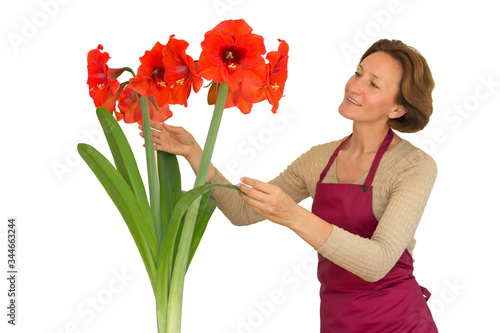 Smiling woman and red amaryllis Canvas Print