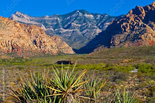 Fototapeta The Limestone Outcrop of The Keystone Thrust, Red Rock NCA, Las Vegas, Nevada, U